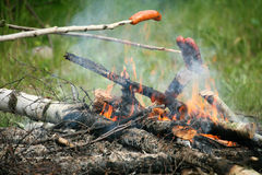Bonfire campfire fire Flames grilling steak on the BBQ Royalty Free Stock Photos