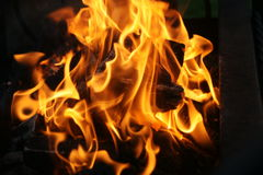 Bonfire. Charming fire. Its heat is able to cook food for a person and to warm him Royalty Free Stock Photos