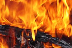 Bonfire close up. With flames, charred wood and ash stock photography