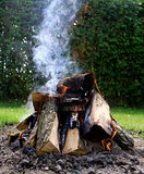 Bonfire close-up Stock Images
