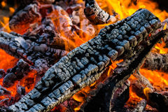 Bonfire close up of the burning logs surrounded my rocks. Beautiful campfire under whines in the gras of your own garden. The grillage is ready for your food Royalty Free Stock Photo