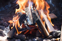 Bonfire close-up view Royalty Free Stock Image
