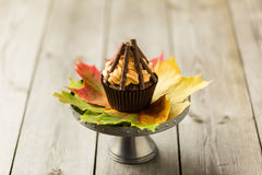 Bonfire cupcakes Stock Images