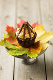 Bonfire cupcakes Royalty Free Stock Photography