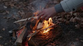 Bonfire in the fall by the lake. Front stock footage