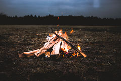 Bonfire in field at sunset
