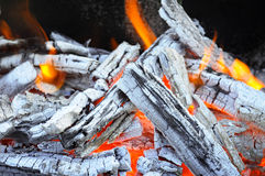 Bonfire, fire and ash Stock Images