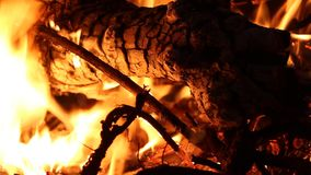 Bonfire -fire, burning flames close up stock video footage