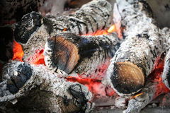 Bonfire. Fire, bonfire in the grill Stock Photos