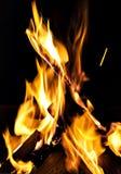 bonfire, fire, logs close up at night Stock Photos