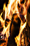 bonfire, fire, logs close up at night Royalty Free Stock Photography