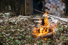 Bonfire, fire. Rest in the woods on a halt. Hunting Lodge. Stock Photos