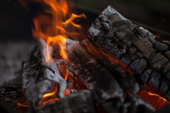 Bonfire. Fire wood. Grilling and cooking fire. Woodfire with flames. Royalty Free Stock Images