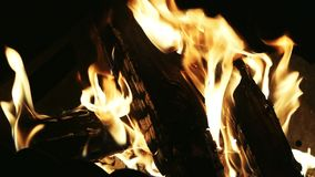 Bonfire, firewood is burning, fire flames in campfire. In slowmotion stock video
