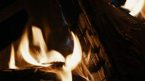Bonfire, firewood is burning, fire flames in campfire. In slowmotion stock footage
