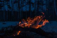 Bonfire firewood forest winter twilight Royalty Free Stock Photos