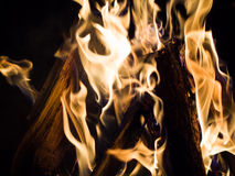 Bonfire. The flame is bringing the warmth for our bodies and the inspiration for our souls Royalty Free Stock Image