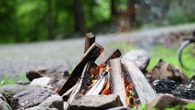 Bonfire flames of camping fire, burning firewood with the sound. Beautiful campfire outdoors. Bonfire flames of camping fire, burning firewood with the sound stock video footage