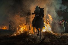 Horses traversing the fire with their rider stock photo