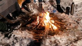 bonfire Fogo inflamado na noite da floresta do inverno video estoque