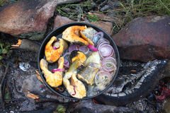Bonfire food: trout and onions roasted. Pieces of orange trout and red onions on a pan over a camp fire. Almost done Royalty Free Stock Photos