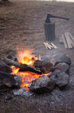 Bonfire in the forest Royalty Free Stock Image