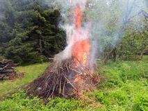 Bonfire on the forest  edge Royalty Free Stock Photography