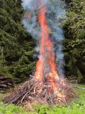 Bonfire on the forest  edge Royalty Free Stock Images