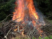Bonfire on the forest  edge Royalty Free Stock Image