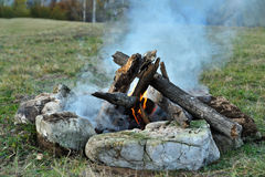 Bonfire in the forest Stock Photo
