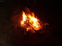 Bonfire. In the forest at night royalty free stock photos