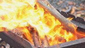 Bonfire in the forest during slow motion with wood stock video footage