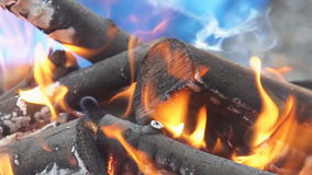 Bonfire in the forest during slow motion with wood stock footage