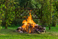 Bonfire in the garden with the grillage ready for a BBQ. Beautiful campfire under whines in the gras of your own garden. The grillage is ready for your food Royalty Free Stock Photos