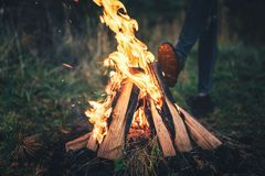 Free Bonfire In The Forest With Girl Warming Up Behind. Royalty Free Stock Images - 126935619