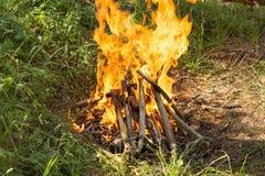 Bonfire lit at a picnic Stock Photography
