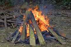 Bonfire with Logs and Boards Stock Photos