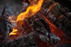 bonfire Madeira do incêndio Grelhando e cozinhando o fogo Woodfire com chamas fotografia de stock
