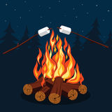 Bonfire with marshmallow Stock Photo