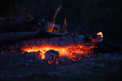 Bonfire in meadow at summer night Stock Photography