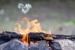 Bonfire on natural background Royalty Free Stock Photo