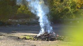 A bonfire on the nature. Smoke from the fire. Campfire. Bonfire smokes Stock Image