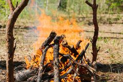 Bonfire next to the tourist camp. Journey into the wild concept. Royalty Free Stock Images