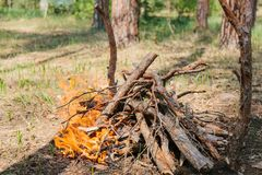 Bonfire next to the tourist camp. Journey into the wild concept. Royalty Free Stock Photos