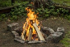 Bonfire. Nice bonfire on the stone fireplace royalty free illustration