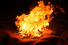 Bonfire at night. Bonfire flames at night on the beach Royalty Free Stock Image