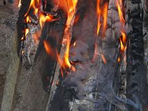 Bonfire at night Stock Photography