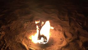 Bonfire at night on the beach footage clip. stock video