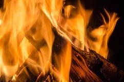 Bonfire Night Stock Photo