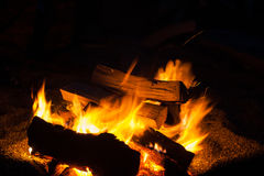 Bonfire in night stock image